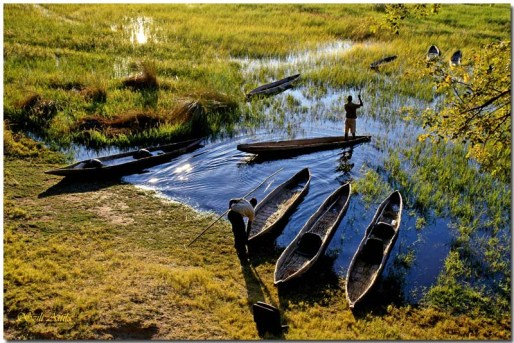 Deblak, imenovan mokoro na jezeru v Botswani. / Logboat called mokoro on the lake in Botswana.